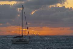 2017-04-26_05-46-20 Waiting for the Sun (canavart) Tags: sxm stmartin stmaarten fwi caribbean orientbay orientbeach sunrise dawn beach morning