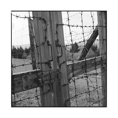 camp 3 • struhof, alsace • 2016 (lem's) Tags: zenza bronica struhof concentration camp alsace gate fence barriere portail barbed wire fil barbelé