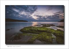 Morning Light (RTA Photography) Tags: stmarysbay brixham southdevon devon rtaphotography sea seascape light nikond7000 sigma1020mm456exdchsm ndgrad sky clouds rocks seaweed still tide
