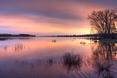waves at sunset (maryannenelson) Tags: colorado mancos jacksonlake sunset colors dusk landscape nonurban colorful