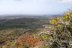Across Lanzarote (simonturkas) Tags: lanzarote canaryislands explore adventure travel islascanarias latitudeoflife latituddevida wanderlust excursion panasonic lumix landscape