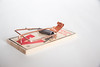 Mousetrap - Generic (insightpest) Tags: pestcontrol mouse mice mousetrap animalcontrol animal control