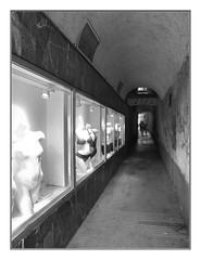Mannequins... (kurtwolf303) Tags: mannequins schaufensterpuppen schaufenster graz austria österreich monochrome einfarbig olympusem1 omd microfourthirds micro43 systemcamera mirrorlesscamera spiegellos pomeranzengasse unterwäsche underwear bw unlimitedphotos topf25 250v10f topf50 500v20f topf75 800views 1000v40f mft topf100 1500v60f kurtwolf303 2000views