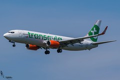 Transavia / PH-GGX / Boeing 737-800 / EHAM-AMS 18R / © (RVA Aviation Photography (Robin Van Acker)) Tags: schiphol amsterdam airport planes trafic airlines avgeek airliner outdoor airplane aircraft vehicle jetliner jet jumbo air photography aviation avitionphotography