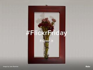 Flickr Friday - Frame It