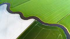 Division (Dani℮l) Tags: groningen nederland verkaveling drone aerial high above lines curves boven waterway sloot divisionfield grass cultivated characteristic holland winsum schouwerzijl