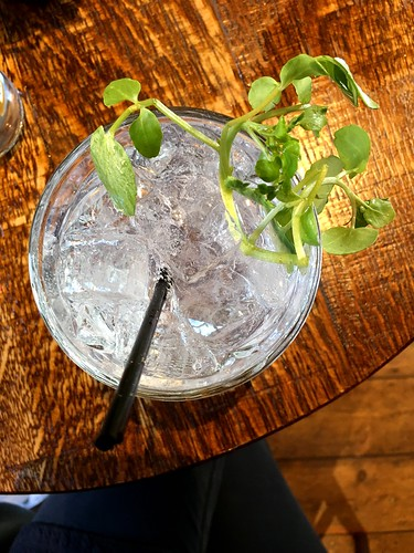 Gin and tonic using Twisted Nose gin