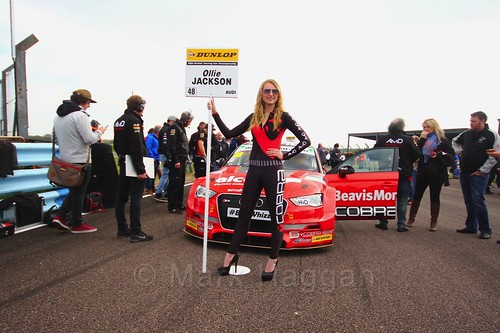 Ollie Jackson on the grid at the Thruxton BTCC weekend, May 2017