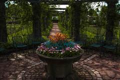 Blumenschale (lilamuhkuh) Tags: blumen flowers schale darmstadt rosenhöhe park grün spring frühling stühle sandstein blumenschale