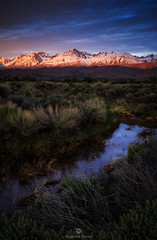 Eastern Sierra  - Range of Light! (Mohanram Sathyanarayanan) Tags: sierranevada snow colors alpine alpenglow mountains mountain california sunrise forest winter trees clouds travel river owens us395 snowpack storm drama fineart brushgrass offroad water may