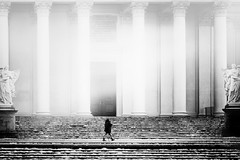 ...wintertogo :)... (*ines_maria) Tags: dmcgx8 panasonic outside city urban exploration architecture walking dog woman winter wien karlskirche blackandwhite bw blancetnoire street streetotography fog light