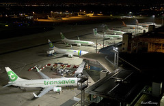 Orly Airport (birrlad) Tags: orly ory international airport paris aircraft aviation airplane airline airplanes airliner airlines airways night photography dark apron ramp terminal boeing b737 transavia easyjet airbus stand gate overview