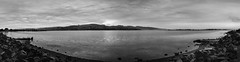 20170517_6639P_7D2-24P 180° at Avon-Heathcote Estuary panorama (137/365)