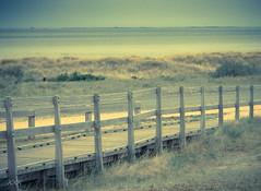 Absence (babs van beieren) Tags: beach fence knokke tzwin belgium nature sea northsea ocean dunes blue dunegrass sand fencedfriday 7dwf saturday landscape beachscape