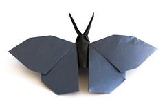 Butterfly - hideo Komatsu (johny_zed) Tags: origami butterfly hideokomatsu