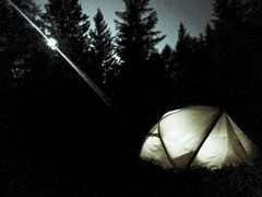 Retreat when it gets dark in the woods (pawannee) Tags: htc10 splittone splittoning night atnight lowlight