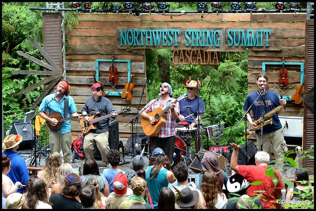 Northwest String Summit - North Plains, OR - July 2016