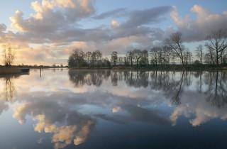 Am Morgen an der Eider; Süderstapel, Stapelholm (18)