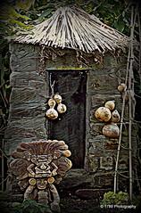 Espíritu de cacao (Rollingstone1) Tags: cocoa bean chocolate cacao hut spirit aztec spanish symbol ghost espiritu fantasma gourd house thatch casa latinamerican totem cane plants artdigital avantegarde art artwork digitalart artisticmanipulation