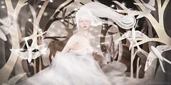 .facing your worst enemy. (Jasmine * Stardust it's magic) Tags: lost found runic stardust moon amore maitreya catwa ionic dreamy princess galaxy forest animals girl windy tableau vivant tsg