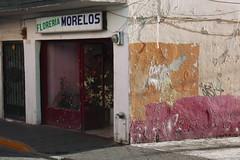 Floreria Morelos (bransilva) Tags:
