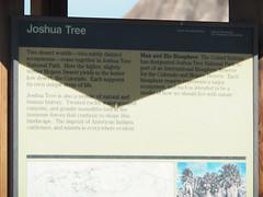 Q3266912 Joshua Tree National Park White Tank sign Mojave vs Colorado deserts (ceztom) Tags: march 26 2017 wilsoncanyon whitetank joshuatree nationalpark