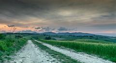 Country Road (stefanogrechi) Tags: landscape paesaggio natura nature sunset tramonto nuvole clouds lunga esposizione long exposition tree albero vento wind