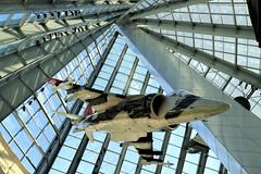Harrier Hanger (95wombat) Tags: unitedstatesmarinecorps museum av8 harrier vstol jet