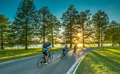 Hains Point (Erinn Shirley) Tags: erinncshirley erinnshirley washingtondc hainspoint cyclist sundown athletic