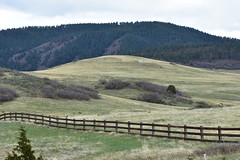 A ranch in the foothills near Sedalia, Colorado. (sharonhorning) Tags: hills foothills fence ranch coloradolife sedaliacolorado colorado