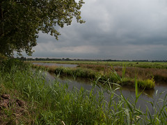 2009-08-25-0004.jpg (Fotorob) Tags: water nederland polder utrecht holland netherlands niederlande breukelen