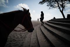 * (Sakulchai Sikitikul) Tags: street snap streetphotography songkhla sony a7s silhouette thailand samilabeach beach horse seascape sea 28mm voigtlander