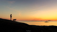 Patience (Kurt Evensen) Tags: myklebust light waiting silhouette sunset rogaland sea water dog sky seascape patience norway walkingthedog shore no