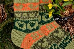 2017-04-16 009 (hepsi2) Tags: sukat socks