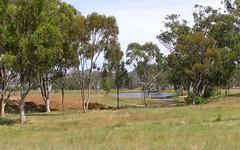 1314 Whitlow Road, Bingara NSW