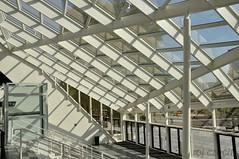 Bercy (roj czech) Tags: architecture architektura lines geometrie sklo okno glass window hala arena křivky tvar shape