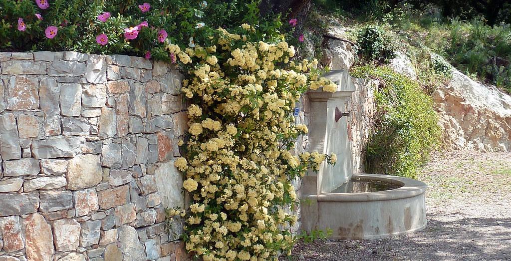 Fontaine fleurie  à côté de la galerie de la mine