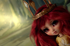 Aurora, Child of Light (The Migratory Dreamery) Tags: pullip custompullip aurora childoflight videogame ubisoft character handmade dollclothes alpacawig red redhead yellow gold crown princess kingdom dark fairytale story warrior light obitsu junplanning groove doll toy dollphotography toyphotography girl fantasy