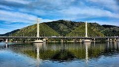 Ponte Anita Garibaldi (Miradortigre) Tags: bridge puente brucke stay tirantes brasil brazil ponte laguna estrada via mar sea