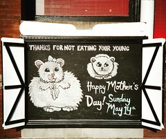 Thanks Mom! 😘💕 #HappyMothersDay to all those #awesomekickass moms out there!  #OuterLayer #chalkboard #QueenStreetWest #humour #drawing #love #family #mom #mama #mother #ma #mommy (Georgie_grrl) Tags: instagramapp square squareformat iphoneography uploaded:by=instagram juno happymothersday love mom mother mama outerlayer chalkboard humour hamsters queenstreetwest toronto ontario