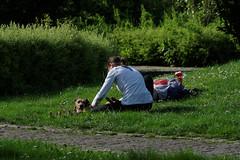 Berliner #713 (.Dirk) Tags: berlin pentaxk5ii sigma10528macro prime street people hund dog park schöneberg