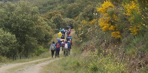 Senderismo por Vilardesilva – Biobra Ourense