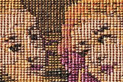 Eyes (Carrie McGann) Tags: tapestry romance macromondays eyes eyeballshotsarecreepy 050817 nikon interesting