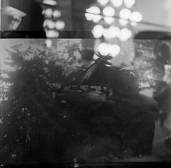 201701xx Dubbelexponerings rulle med Jonas - Leksaks fotofika stund - Rolleicord III - tri-x 400 at 800 - d76 stock 7.5 min (Sina Farhat - Webcoast) Tags: rolleicordiii yashica635 condeco indoor inomhus fototräffigöteborg kodaktrix400at800 pushed leksaker toys tlr dubbelexponering doubleexposure umeå negative blackwhite svartvit film analog 6x6 square mediumformat mellanformat vinter winter gothenburg göteborg sverige sweden 031 dslrscanned raw
