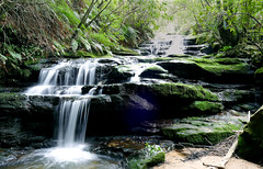 res1 (nigeldunn73) Tags: fz1000 waterfall long exposure australia blue mountains panasonic lumix