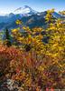 Artist Point Trail in the Fall (murali_n) Tags: artistpoint mtbaker northerncascades washington unitedstates us