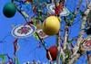 6245867344_IMG_8436 (sarahmacphotos) Tags: pragueprahatouristtravelstravellingcanon paintedeggs easter eggs traditions colour color
