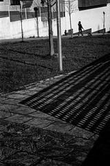 (Noel F.) Tags: leica m2 voigtlander 50 15 asph vm kodak tmax 400 stand santiago compostela galiza galicia