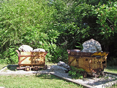 Plaster Mine Cars (PPWIII) Tags: grandrapids grandville plaster cart car railroad mine wedgewood park