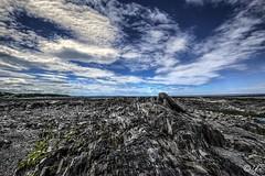 sainte luce (yannick_gagnon) Tags: paysage landscape landscapesdreams landscapes